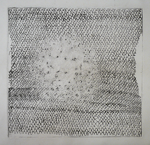square flies